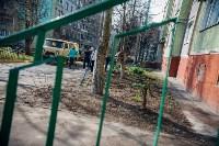 Посадка деревьев во дворе на ул. Максимовского, 23, Фото: 13
