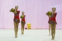 Межрегиональный турнир по художественной гимнастике — «Осенний вальс». 6-7 сентября 2014, Фото: 9