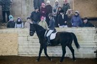Открытый любительский турнир по конному спорту., Фото: 26