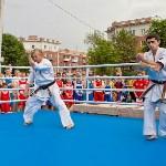 Турнир по боксу в Алексине, Фото: 24