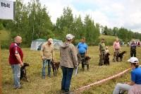 Выставка охотничьих собак под Тулой, Фото: 81