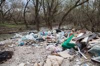 В Туле на берегу Тулицы обнаружен незаконный мусорный полигон, Фото: 35