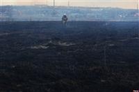 Сразу в нескольких районах Тульской области загорелись поля, Фото: 10