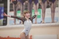 Первенство ЦФО по спортивной гимнастике, Фото: 180