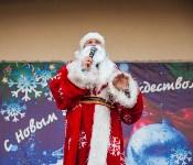Забег Дедов Морозов, Фото: 155