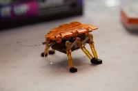 Открытие шоу роботов в Туле: искусственный интеллект и робо-дискотека, Фото: 5