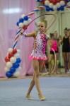 Соревнования по художественной гимнастике 31 марта-1 апреля 2016 года, Фото: 4