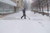 Снежная Тула. 15 ноября 2015, Фото: 3