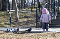 Солнечный день в Белоусовском парке, Фото: 44