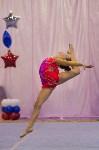 Соревнования по художественной гимнастике 31 марта-1 апреля 2016 года, Фото: 28
