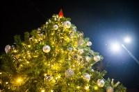 Как туляки отпраздновали Старый Новый год на музыкальном катке кластера «Октава», Фото: 77