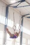 Мужская спортивная гимнастика в Туле, Фото: 19