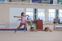 Тульские гимнастки готовятся к первенству России, Фото: 7