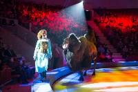 Тульский цирк, Фото: 65