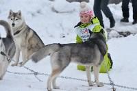 Праздник северных собак на Куликовом поле , Фото: 42