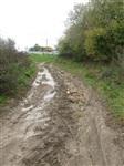 Разбитая дорога в деревне Морозовка , Фото: 6