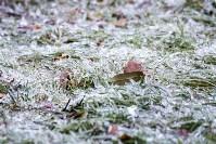 Гололед в Туле, Фото: 9