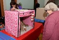 Выставка кошек в Туле, Фото: 10