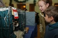 Выставка кошек. 21.12.2014, Фото: 31