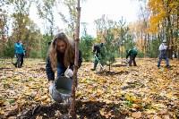 В Центральном парке Тулы появился сосновый бор «Слободы», Фото: 64