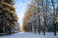 Снежное Поленово, Фото: 19