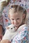 III благотворительный фестиваль помощи животным, Фото: 13