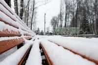 Мартовский снег в Туле, Фото: 1