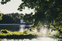 Летний день в богородицком парке, Фото: 36