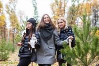В Центральном парке Тулы появился сосновый бор «Слободы», Фото: 16