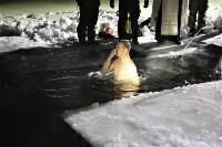 Тульские военнослужащие ВДВ окунулись в прорубь на Крещение, Фото: 11
