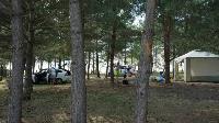 Вторые Кондуки, Голубая вода и Белые пески: обзор непопулярных пляжей Тульской области, Фото: 3