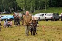 Выставка охотничьих собак под Тулой, Фото: 47