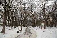 Рогожинский парк, зима 2019, Фото: 2