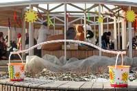 Масленица-2020, Фото: 15