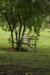 Первомайский дом-интернат для престарелых, Фото: 26