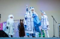 Битва Дедов Морозов. 30.11.14, Фото: 15