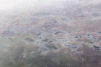 Маслянистые пятна на Упе. 15 февраля 2016 года, Фото: 6