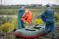 В Туле спасли лебедя с одним крылом, Фото: 18