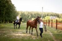 Новые лошади для конной полиции в Центральном парке, Фото: 14