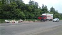 На Новомосковском шоссе у фуры развалился прицеп. 28.05.2014, Фото: 4