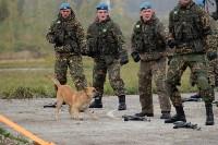 Оружейная Россия, 08.10.2015, Фото: 113