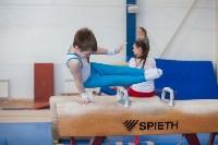 Мужская спортивная гимнастика в Туле, Фото: 13