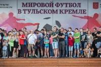 Матч Испания - Россия в Тульском кремле, Фото: 82