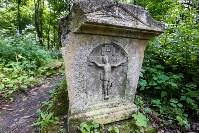 Всехсвятское кладбище. Июль 2016, Фото: 7