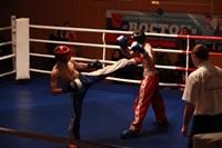В Туле прошла матчевая встреча звезд кикбоксинга, Фото: 44