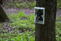 Кладбище домашних животных в Туле, Фото: 5