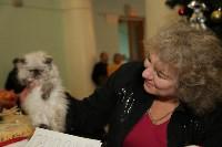Выставка кошек. 21.12.2014, Фото: 25