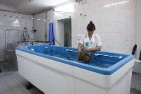 Худеем и молодеем в «Центре реабилитации и профилактики», Фото: 2