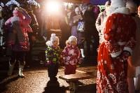 Главную ёлку Тулы открыли грандиозным фейерверком, Фото: 43