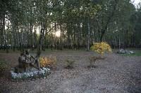 Благоустройство территории пруда в Комсомольском парке, Фото: 1